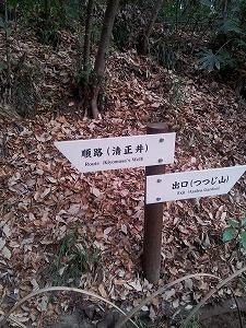 明治神宮3.jpg